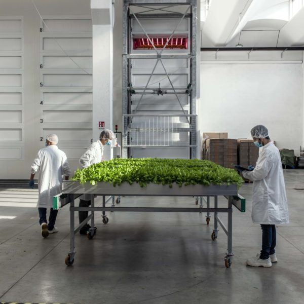 Melzo, Milan.